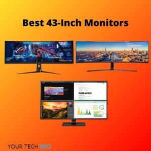 Best 43-inch Monitors